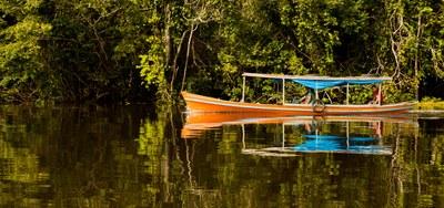 USAID e empresas privadas lançam plataforma para promover desenvolvimento sustentável na Amazônia