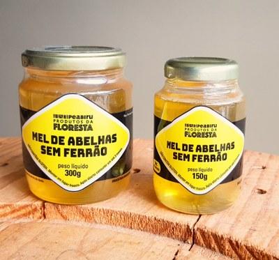 Mel de abelhas sem ferrão já pode ser comercializado