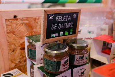 Sabores amazônicos ganham mercado nas grandes cidades do sudeste em negócios de impacto social e ambiental