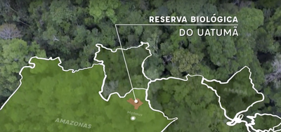 Vídeo: Monitoramento da biodiversidade na Reserva Biológica do Uatumã