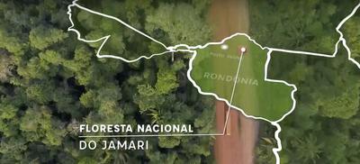 Vídeo: Monitoramento de Biodiversidade na Flona Jamari
